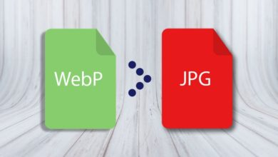 Photo of WebP nedir?